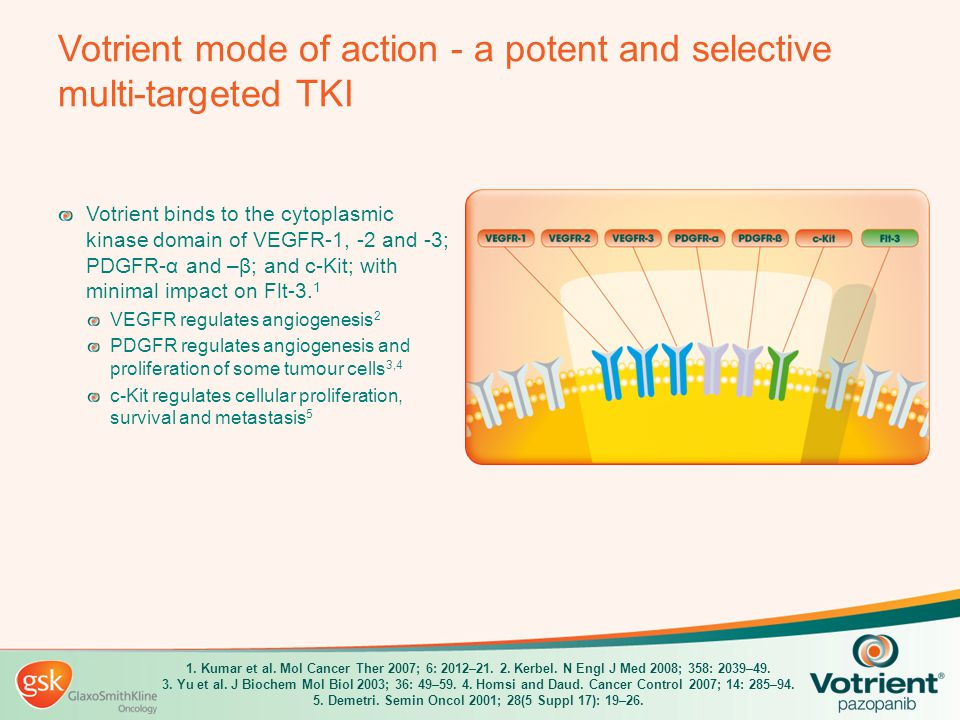 Phase III Trial of Pazopanib in Locally Advanced and/or Metastatic Renal Cell Carcinoma Cora N.