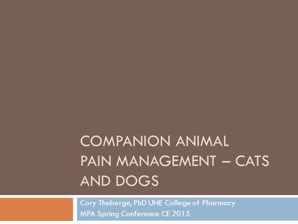 Learning Objectives  Identify the physiological characteristics of cats and dogs that affect pain medication absorption, metabolism, and excretion  Recognize the indications, side effects, and counseling points of pain management treatment options in cats and dogs  Recall veterinary-label medications used for cat and dog pain management