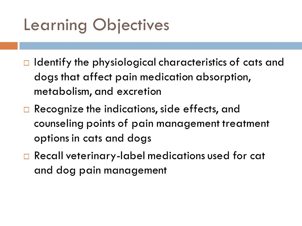 Learning Objectives  Identify the physiological characteristics of cats and dogs that affect pain medication absorption, metabolism, and excretion 