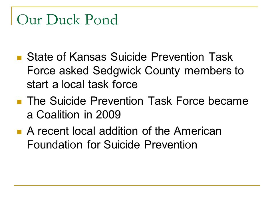 Our Duck Pond State of Kansas Suicide Prevention Task Force asked Sedgwick County members to start a local task force The Suicide Prevention Task Force became a Coalition in 2009 A recent local addition of the American Foundation for Suicide Prevention