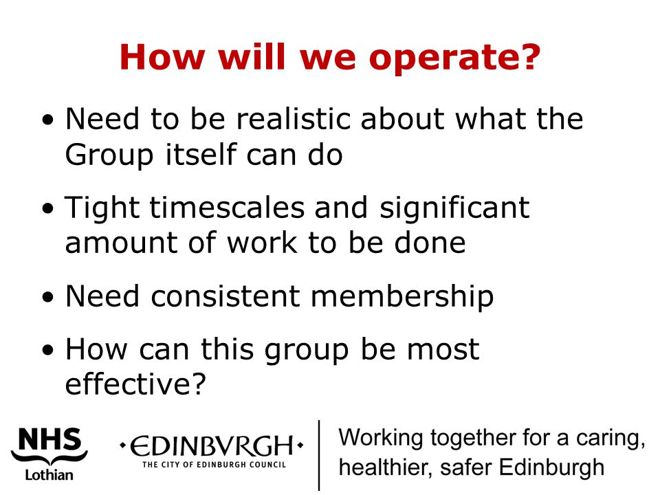 How will we operate? Need to be realistic about what the Group itself can do Tight timescales and significant amount of work to be done Need consisten
