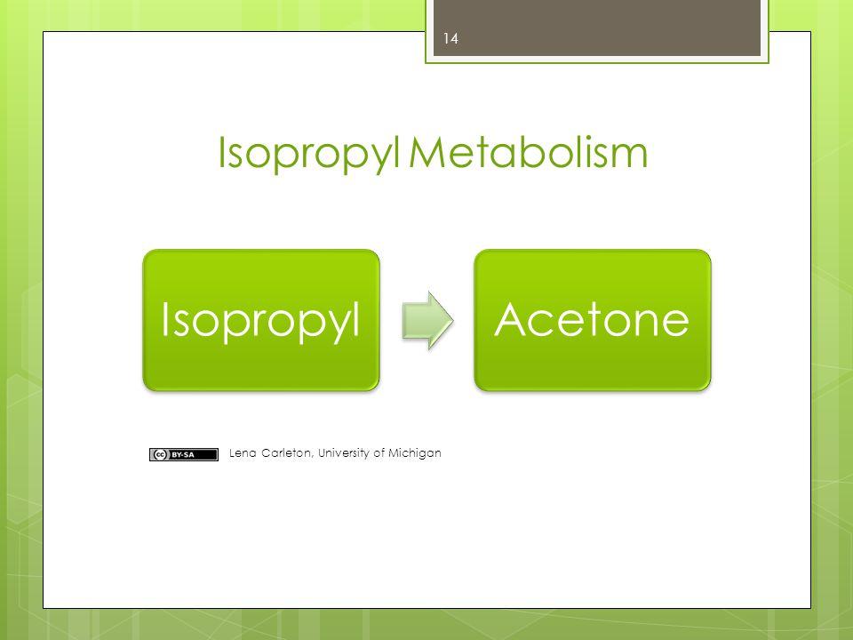 IsopropylAcetone Isopropyl Metabolism Lena Carleton, University of Michigan 14