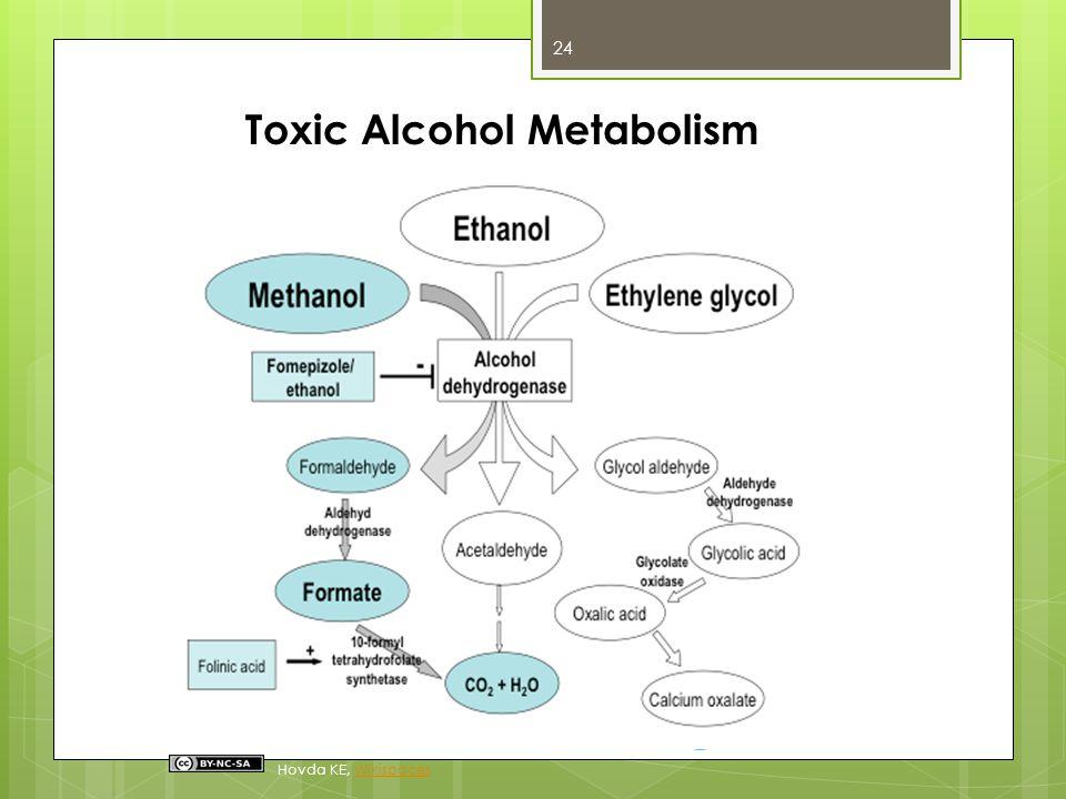 Toxic Alcohol Metabolism Hovda KE, WikispacesWikispaces 24