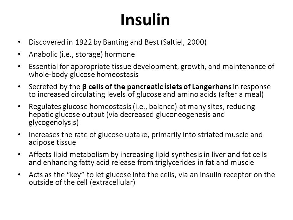 Insulin Discovered in 1922 by Banting and Best (Saltiel, 2000) Anabolic (i.e., storage) hormone Essential for appropriate tissue development, growth, and maintenance of whole-body glucose homeostasis Secreted by the β cells of the pancreatic islets of Langerhans in response to increased circulating levels of glucose and amino acids (after a meal) Regulates glucose homeostasis (i.e., balance) at many sites, reducing hepatic glucose output (via decreased gluconeogenesis and glycogenolysis) Increases the rate of glucose uptake, primarily into striated muscle and adipose tissue Affects lipid metabolism by increasing lipid synthesis in liver and fat cells and enhancing fatty acid release from triglycerides in fat and muscle Acts as the key to let glucose into the cells, via an insulin receptor on the outside of the cell (extracellular)