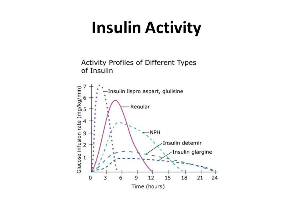 Insulin Activity