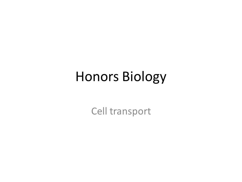 Honors Biology Cell transport