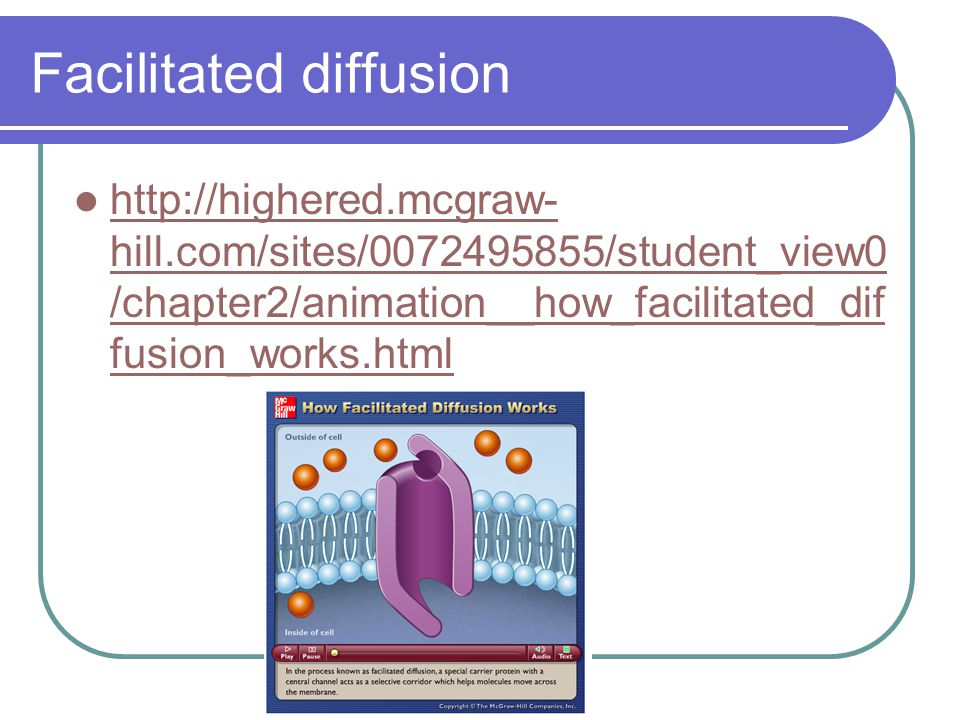 Facilitated diffusion http://highered.mcgraw- hill.com/sites/0072495855/student_view0 /chapter2/animation__how_facilitated_dif fusion_works.html http://highered.mcgraw- hill.com/sites/0072495855/student_view0 /chapter2/animation__how_facilitated_dif fusion_works.html