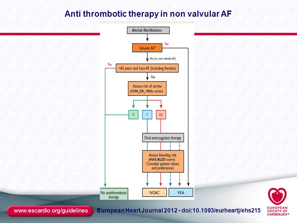 www.escardio.org/guidelines European Heart Journal 2012 - doi:10.1093/eurheartj/ehs215 Anti thrombotic therapy in non valvular AF
