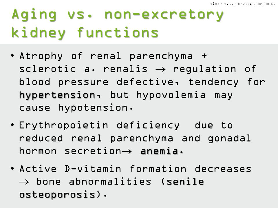 TÁMOP-4.1.2-08/1/A-2009-0011 hypertensionAtrophy of renal parenchyma + sclerotic a. renalis  regulation of blood pressure defective, tendency for hyp