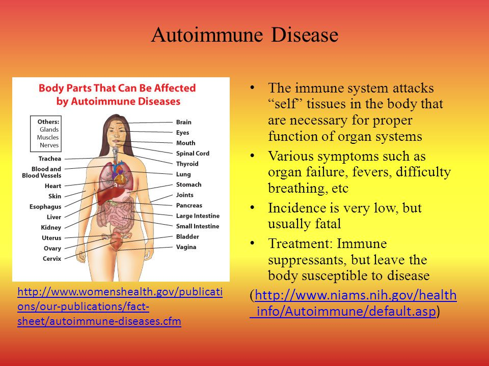 Autoimmune Disease The immune system attacks self tissues in the body that are necessary for proper function of organ systems Various symptoms such as organ failure, fevers, difficulty breathing, etc Incidence is very low, but usually fatal Treatment: Immune suppressants, but leave the body susceptible to disease ( http://www.niams.nih.gov/health _info/Autoimmune/default.asp) http://www.niams.nih.gov/health _info/Autoimmune/default.asp http://www.womenshealth.gov/publicati ons/our-publications/fact- sheet/autoimmune-diseases.cfm
