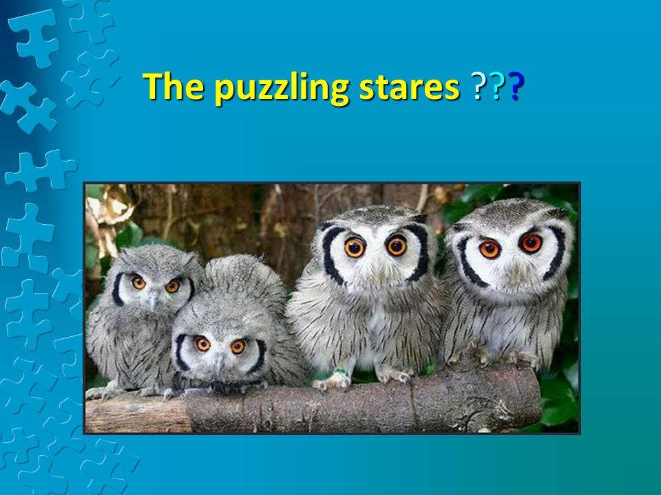 The puzzling stares