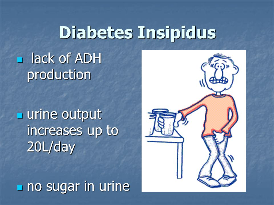 Diabetes Insipidus lack of ADH production lack of ADH production urine output increases up to 20L/day urine output increases up to 20L/day no sugar in