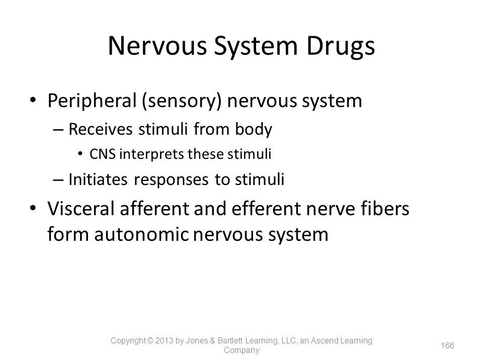 Nervous System Drugs Peripheral (sensory) nervous system – Receives stimuli from body CNS interprets these stimuli – Initiates responses to stimuli Vi