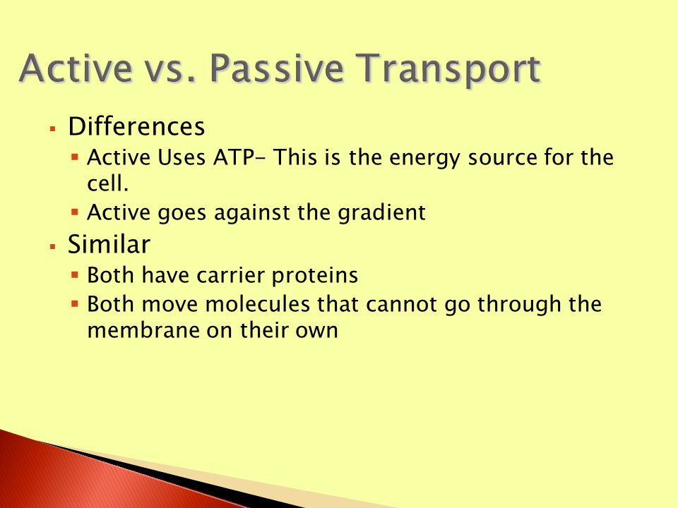  Look back at your notes for Passive and Active Transport.