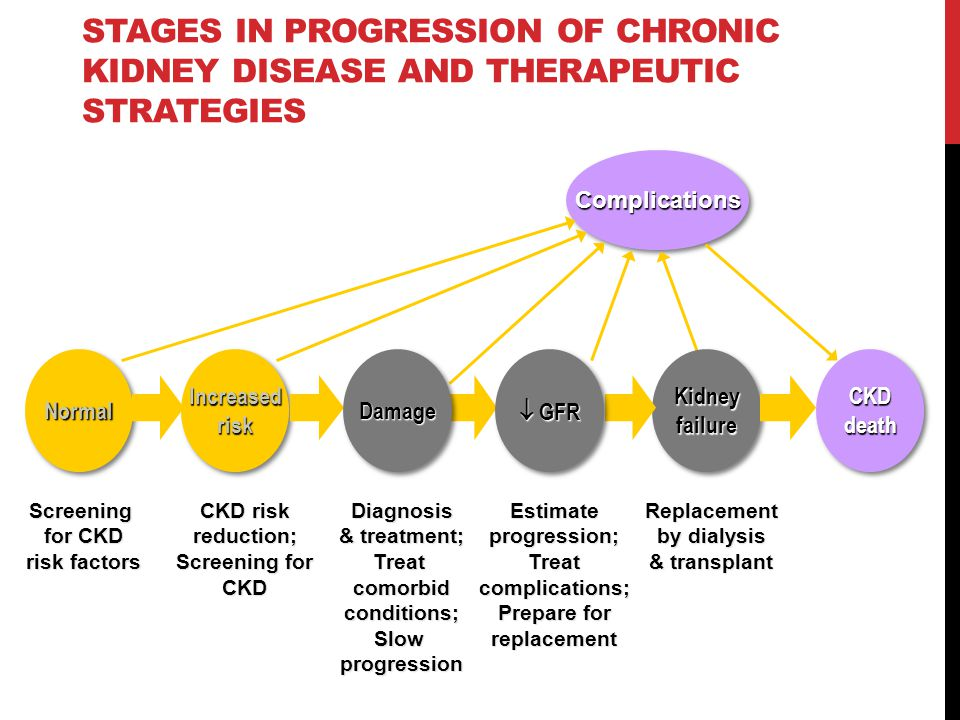 CKD death STAGES IN PROGRESSION OF CHRONIC KIDNEY DISEASE AND THERAPEUTIC STRATEGIES ComplicationsComplications Screening for CKD risk factors CKD risk reduction; Screening for CKD Diagnosis & treatment; Treat comorbid conditions; Slow progression Estimate progression; Treat complications; Prepare for replacement Replacement by dialysis & transplant NormalNormal Increased risk Kidney failure DamageDamage  GFR