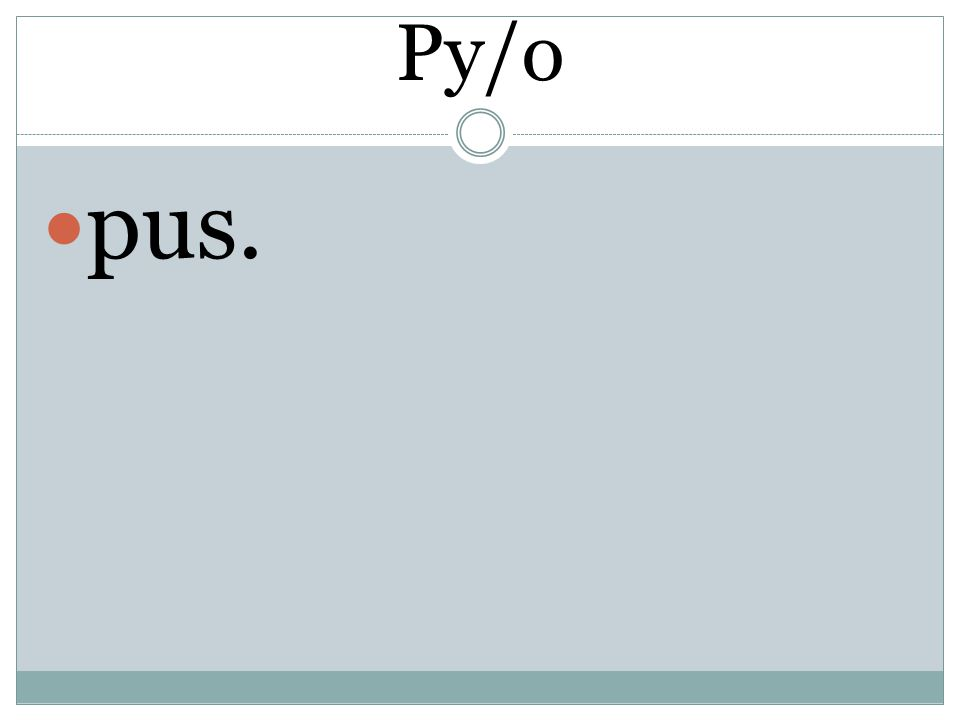Py/o pus.