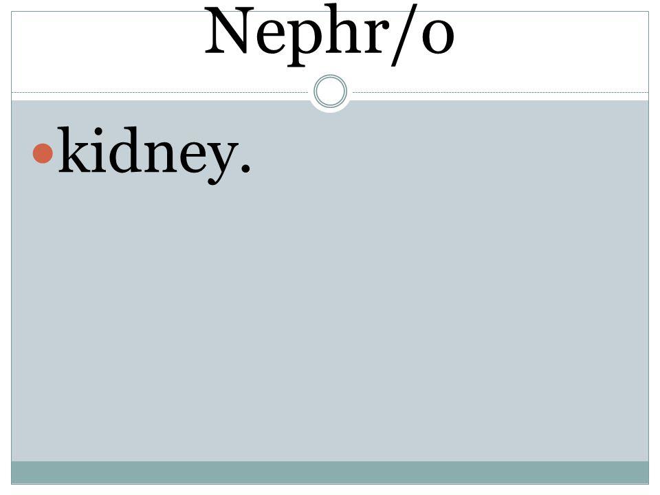 Nephr/o kidney.