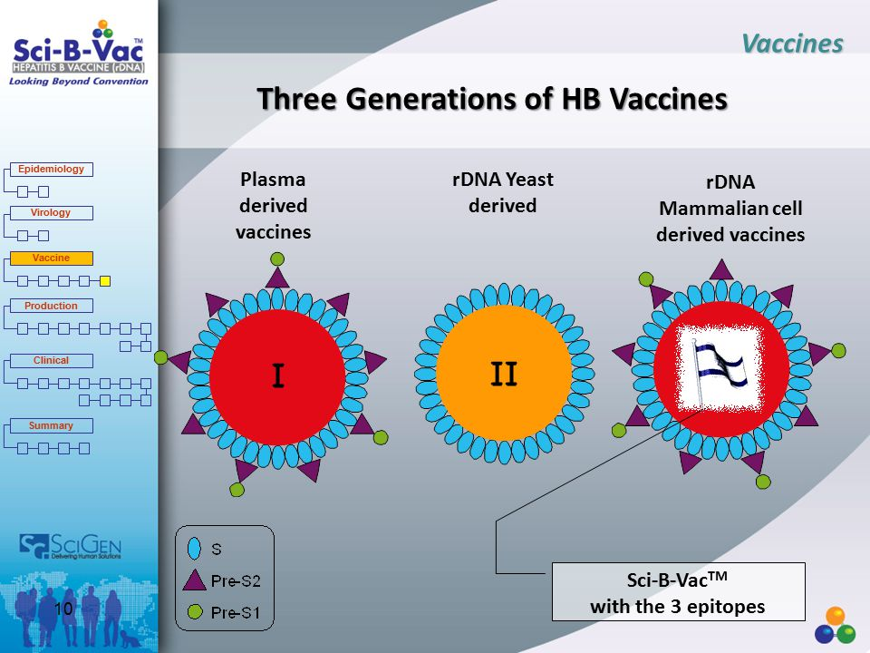 Three Generations of HB Vaccines Plasma derived vaccines rDNA Yeast derived rDNA Mammalian cell derived vaccines Sci-B-Vac TM with the 3 epitopes Vaccines Epidemiology Virology Vaccine Production Clinical Summary 10