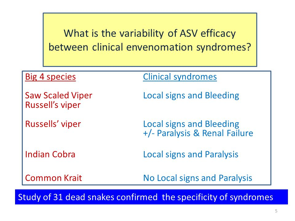 5 What is the variability of ASV efficacy between clinical envenomation syndromes? Big 4 species Clinical syndromes Saw Scaled ViperLocal signs and Bl