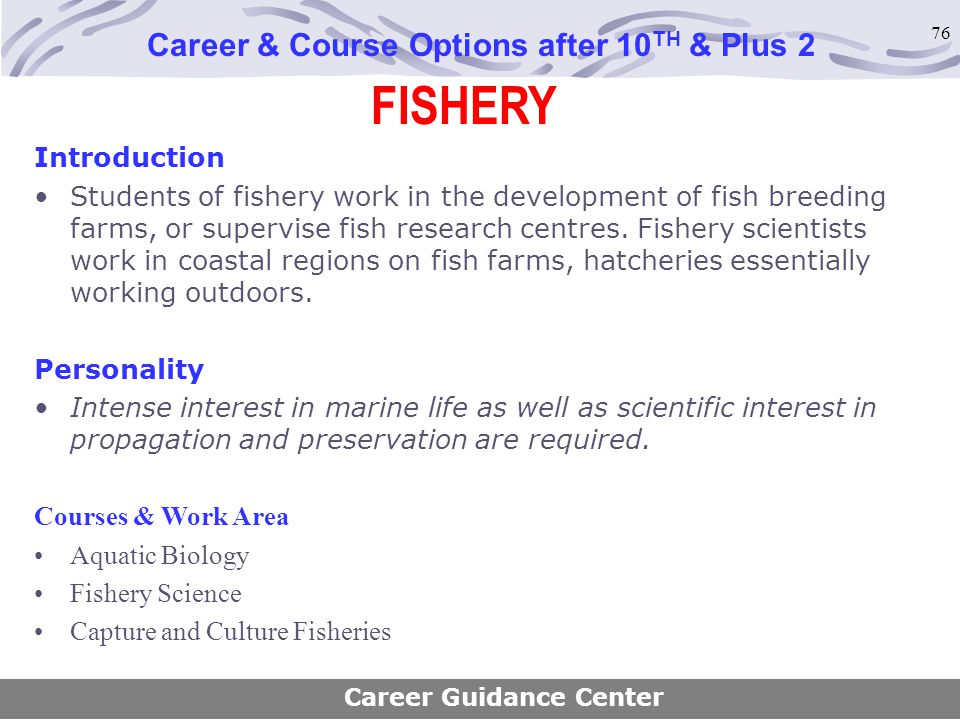 76 FISHERY Career & Course Options after 10 TH & Plus 2 Introduction Students of fishery work in the development of fish breeding farms, or supervise