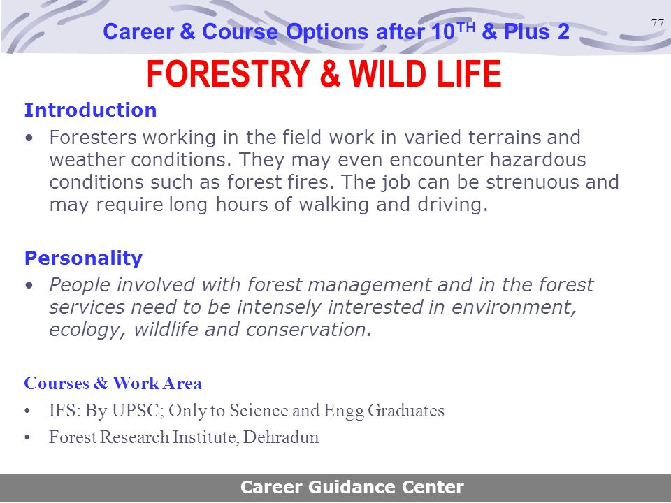 77 FORESTRY & WILD LIFE Career & Course Options after 10 TH & Plus 2 Introduction Foresters working in the field work in varied terrains and weather c