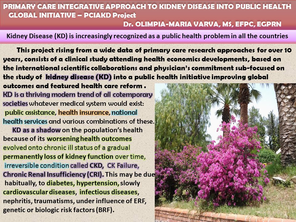 PRIMARY CARE INTEGRATIVE APPROACH TO KIDNEY DISEASE INTO PUBLIC HEALTH GLOBAL INITIATIVE – PCIAKD Project Dr.