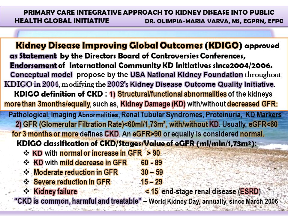 PRIMARY CARE INTEGRATIVE APPROACH TO KIDNEY DISEASE INTO PUBLIC HEALTH GLOBAL INITIATIVE DR. OLIMPIA-MARIA VARVA, MS, EGPRN, EFPC