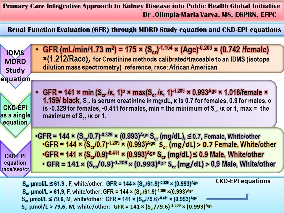 Primary Care Integrative Approach to Kidney Disease into Public Health Global Initiative Dr.Olimpia-Maria Varva, MS, EGPRN, EFPC IDMS MDRD Study equation CKD-EPI as a single equation CKD-EPI equation race/sex/cr Renal Function Evaluation (GFR) through MDRD Study equation and CKD-EPI equations CKD-EPI equations