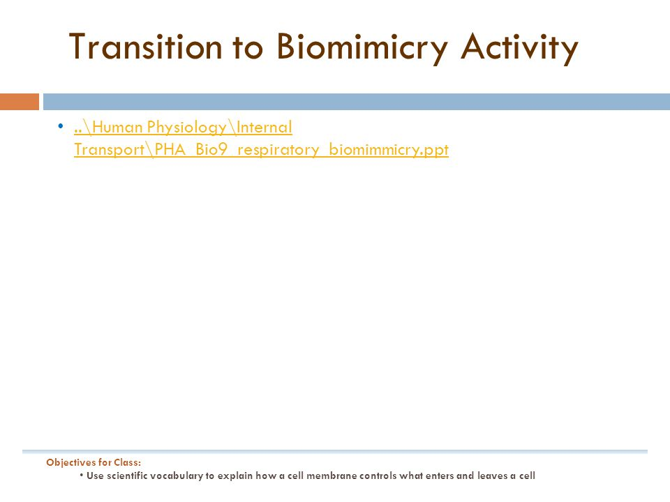 Transition to Biomimicry Activity..\Human Physiology\Internal Transport\PHA_Bio9_respiratory_biomimmicry.ppt..\Human Physiology\Internal Transport\PHA_Bio9_respiratory_biomimmicry.ppt Objectives for Class: Use scientific vocabulary to explain how a cell membrane controls what enters and leaves a cell