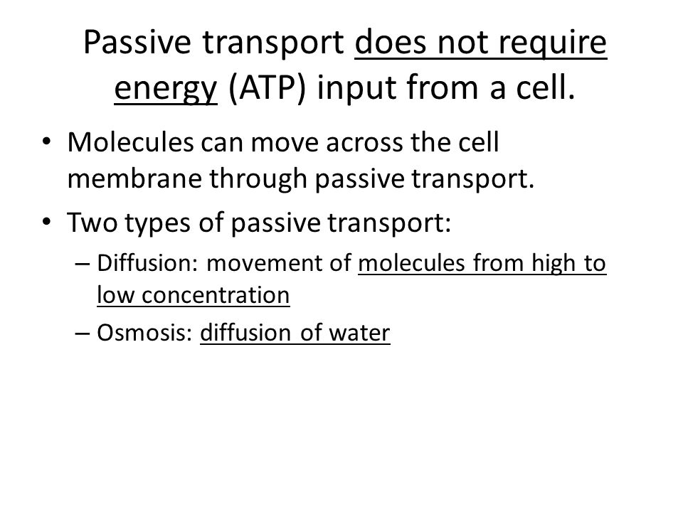 Passive transport does not require energy (ATP) input from a cell. Molecules can move across the cell membrane through passive transport. Two types of