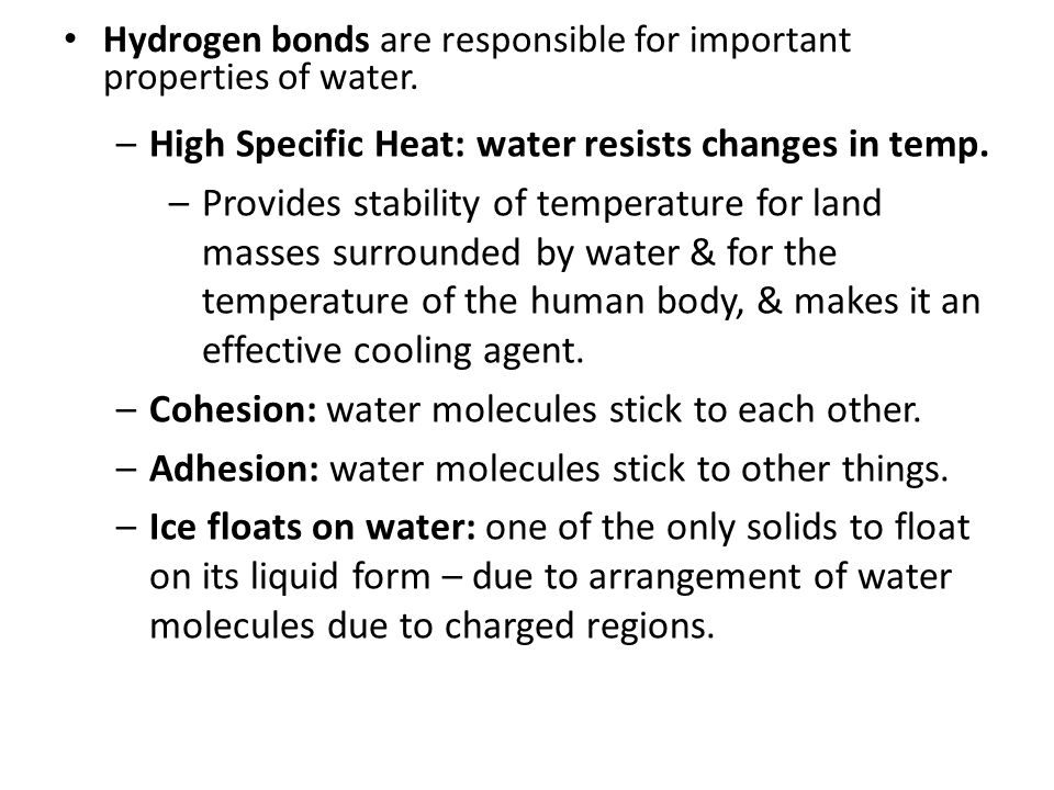 Hydrogen bonds are responsible for important properties of water. –High Specific Heat: water resists changes in temp. –Provides stability of temperatu