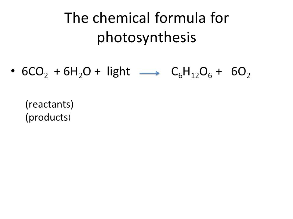 The chemical formula for photosynthesis 6CO 2 + 6H 2 O + light C 6 H 12 O 6 + 6O 2 (reactants) (products ) Carbon dioxide plus water plus light yields