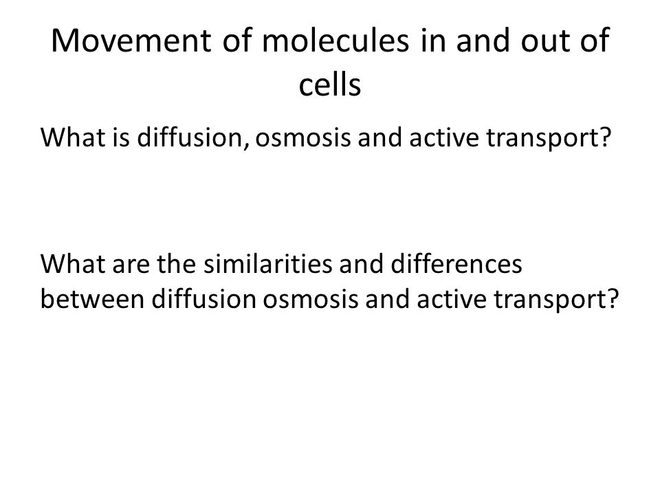 Movement of molecules in and out of cells What is diffusion, osmosis and active transport? What are the similarities and differences between diffusion
