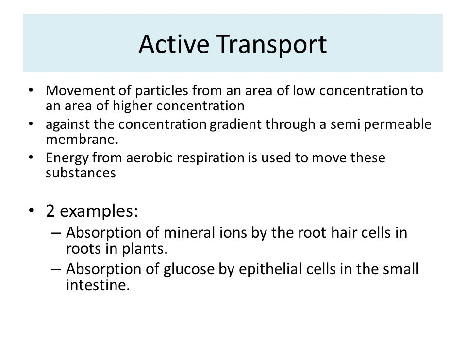 Active Transport Movement of particles from an area of low concentration to an area of higher concentration against the concentration gradient through