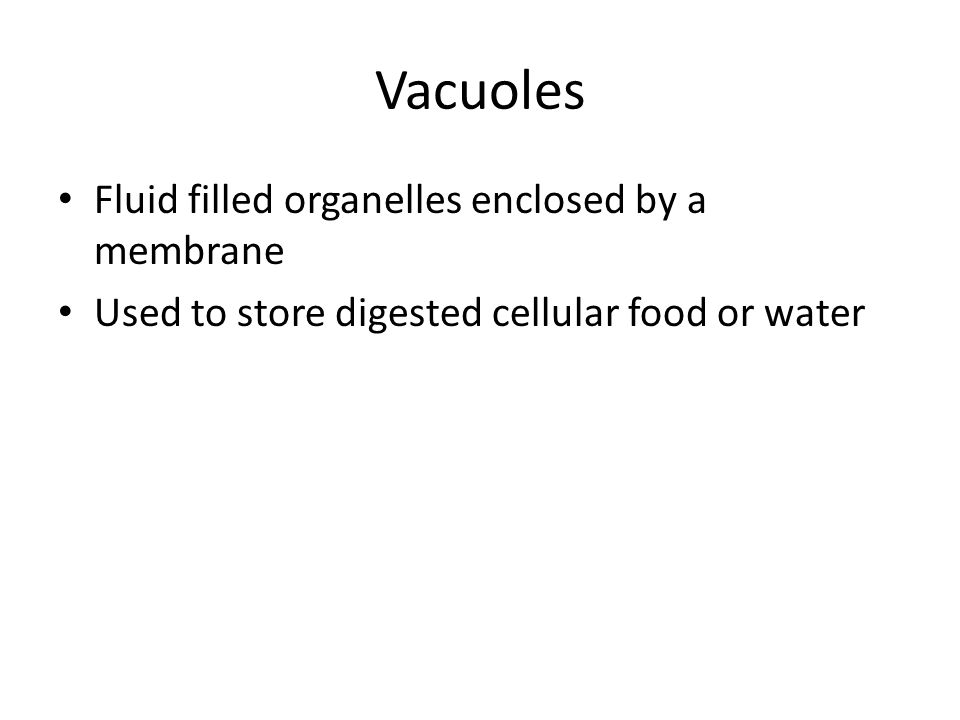 Vacuoles Fluid filled organelles enclosed by a membrane Used to store digested cellular food or water
