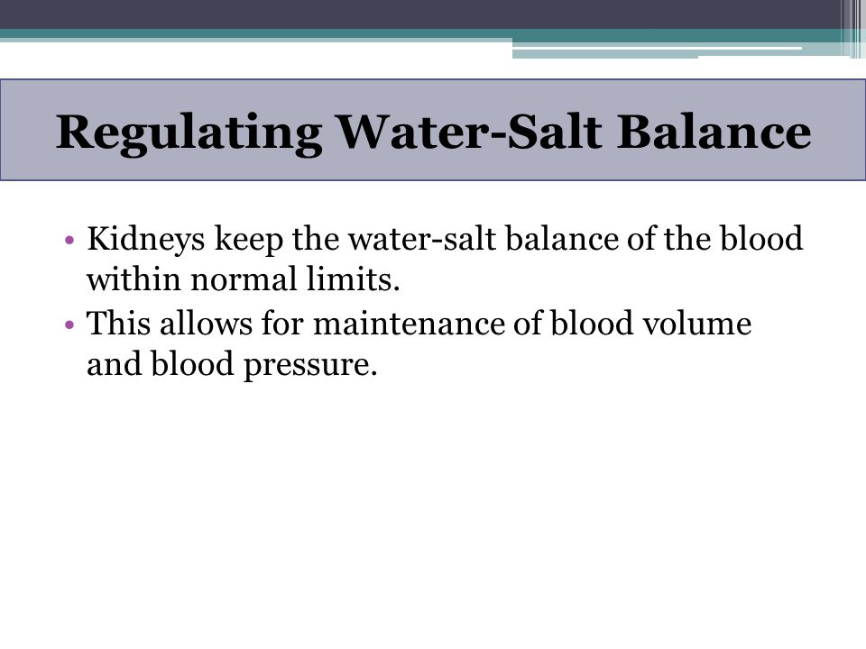 Regulating Water-Salt Balance Kidneys keep the water-salt balance of the blood within normal limits. This allows for maintenance of blood volume and b