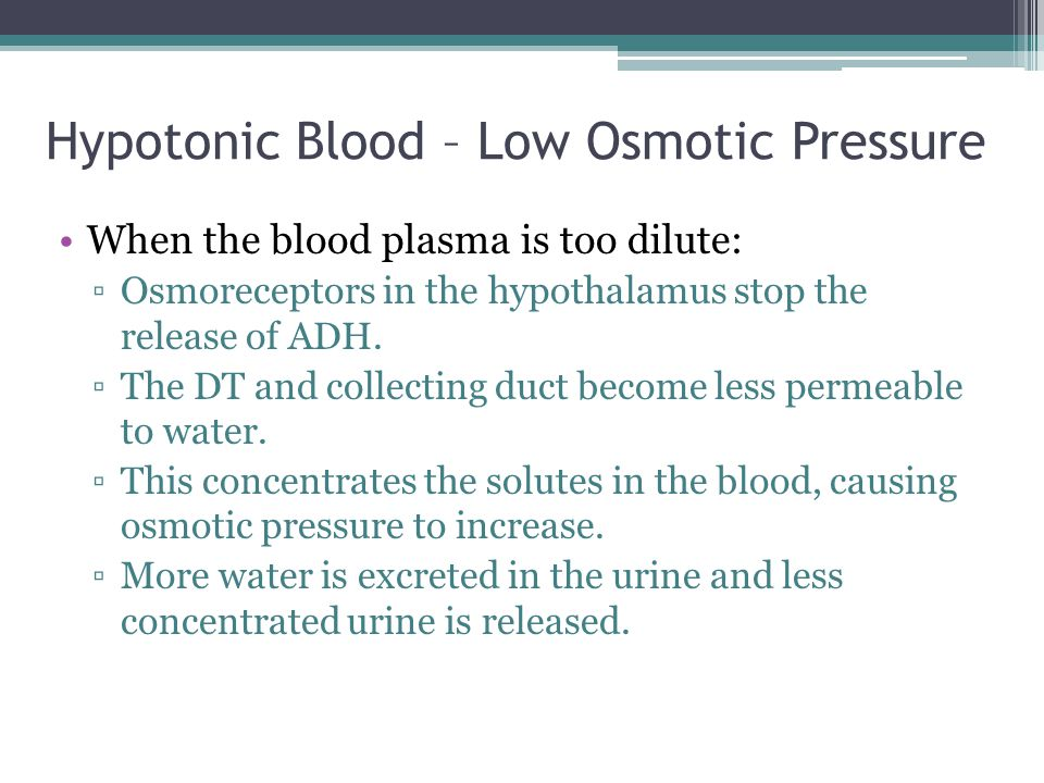 Hypotonic Blood – Low Osmotic Pressure When the blood plasma is too dilute: ▫Osmoreceptors in the hypothalamus stop the release of ADH.