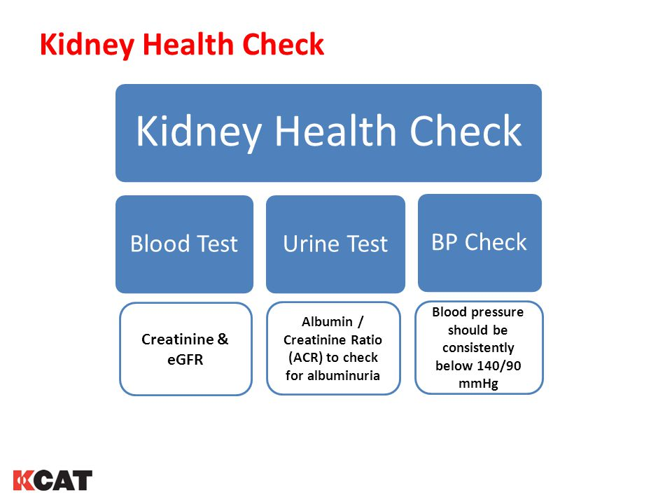 Kidney Health Check Creatinine & eGFR Blood pressure should be consistently below 140/90 mmHg Albumin / Creatinine Ratio (ACR) to check for albuminuria Kidney Health Check Blood TestUrine TestBP Check