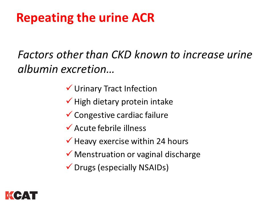 Repeating the urine ACR Factors other than CKD known to increase urine albumin excretion… Urinary Tract Infection High dietary protein intake Congestive cardiac failure Acute febrile illness Heavy exercise within 24 hours Menstruation or vaginal discharge Drugs (especially NSAIDs)