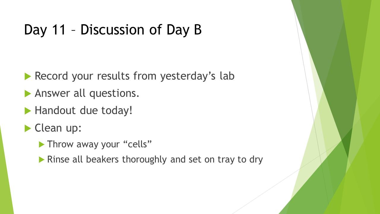 Day 11 – Discussion of Day B  Record your results from yesterday's lab  Answer all questions.