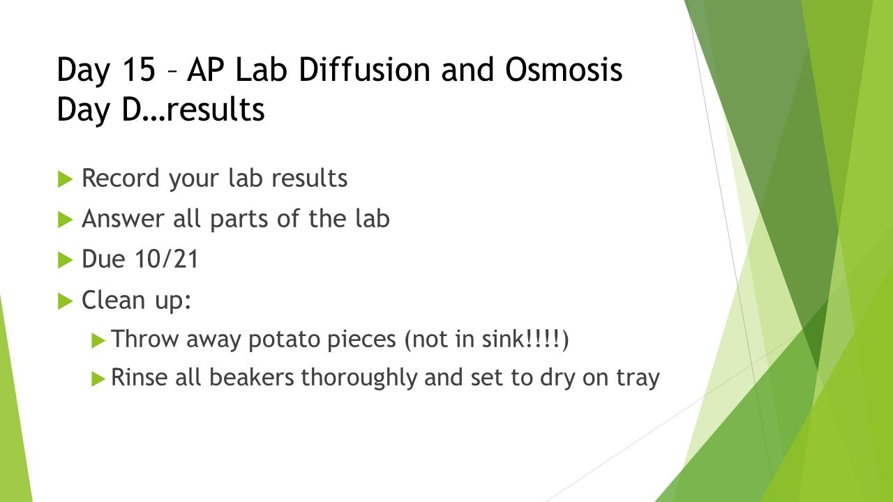 Day 15 – AP Lab Diffusion and Osmosis Day D…results  Record your lab results  Answer all parts of the lab  Due 10/21  Clean up:  Throw away potato pieces (not in sink!!!!)  Rinse all beakers thoroughly and set to dry on tray
