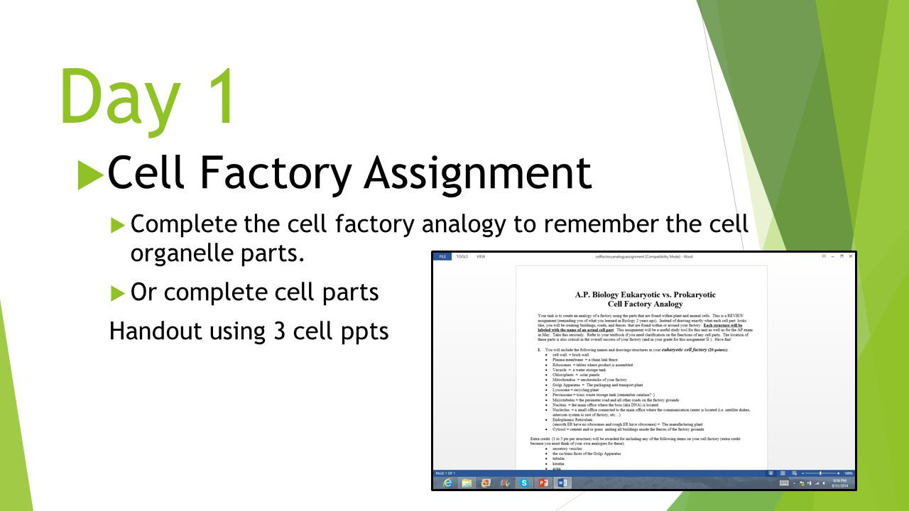 Day 1  Cell Factory Assignment  Complete the cell factory analogy to remember the cell organelle parts.