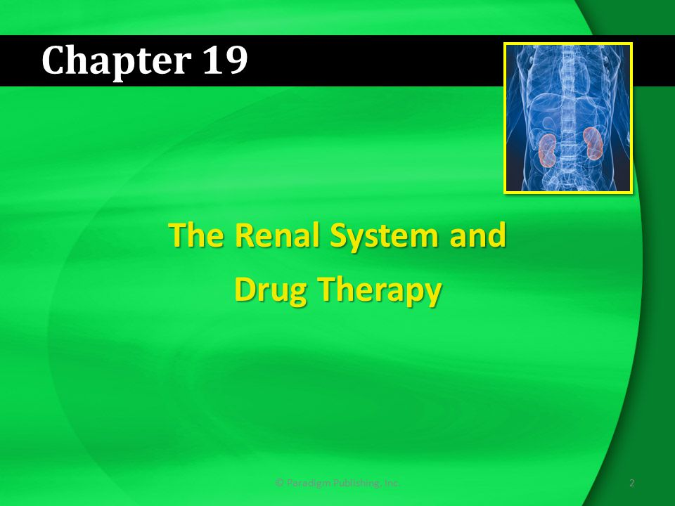 2© Paradigm Publishing, Inc. Chapter 19 The Renal System and Drug Therapy