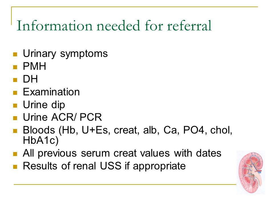 Information needed for referral Urinary symptoms PMH DH Examination Urine dip Urine ACR/ PCR Bloods (Hb, U+Es, creat, alb, Ca, PO4, chol, HbA1c) All previous serum creat values with dates Results of renal USS if appropriate