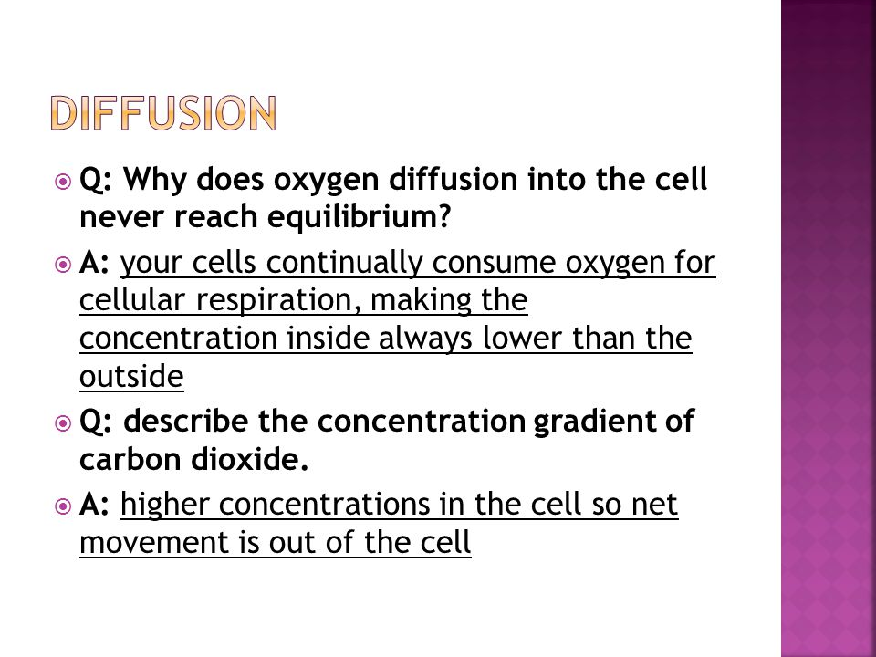  Q: Why does oxygen diffusion into the cell never reach equilibrium.