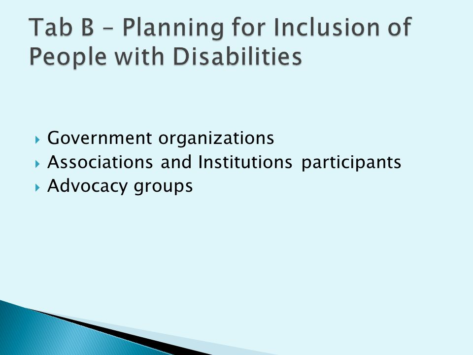  Government organizations  Associations and Institutions participants  Advocacy groups