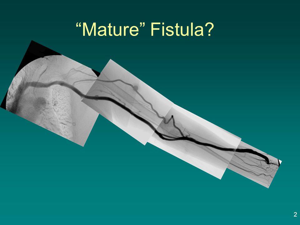 """Mature"" Fistula? 2"