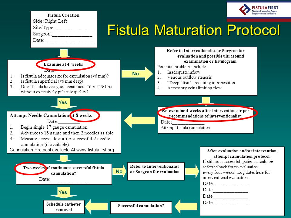 Fistula Creation Side: Right Left Site/Type:______________ Surgeon:_______________ Date:__________________ Examine at 4 weeks Date:__________ 1.Is fis