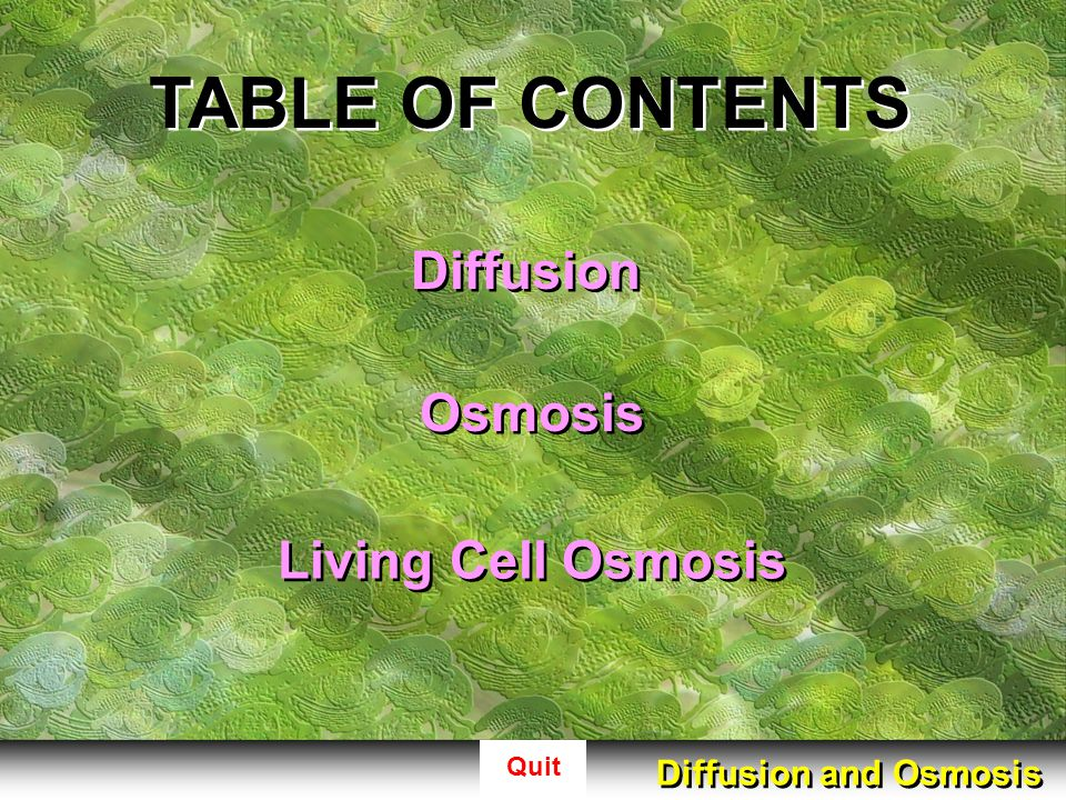 Quit OSMOMETER As water diffuses through the membrane down the gradient from the cup into the bell the overall fluid level rises up the straw continue animation Diffusion and Osmosis