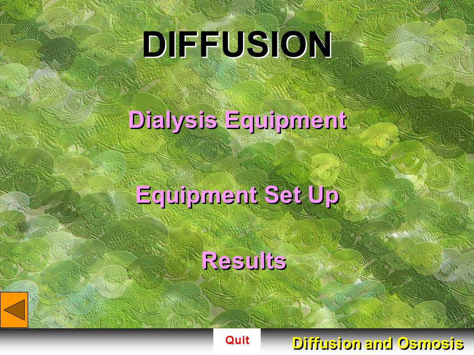 Quit Diffusion (Dialysis Equipment) pipet closures glass dish glucose test strips glucose test strips dialysis tubing dialysis tubing Diffusion and Osmosis